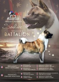 Regalia's BATTALION